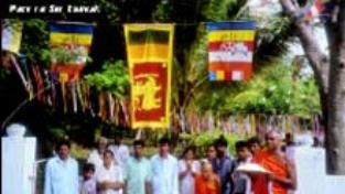 Pace in Sri Lanka?