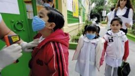 Influenza suina, nuova epidemia?