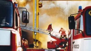 I pompieroidi