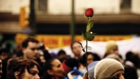 Rose contro la crisi
