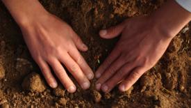 Far risorgere la terra