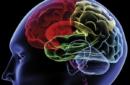 Allenare il cervello ad ogni età