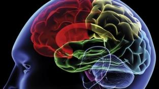 Come prendersi cura del proprio cervello