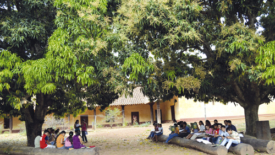 La diffusione dell'istruzione
