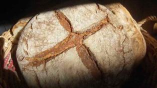 Pane, Eucarestia e fraternità