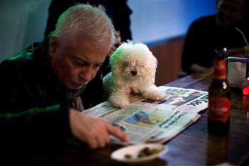 Al pub con il proprio cane