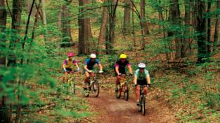 La bicicletta (e non solo) tira contro la crisi