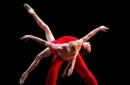 Giornata mondiale della danza, le celebrazioni sul web