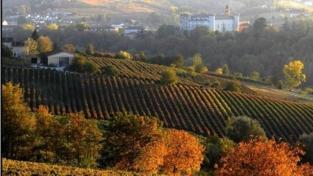 Le colline delle Langhe dichiarate patrimonio dell'umanità