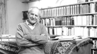 Popper e l'avventura della conoscenza