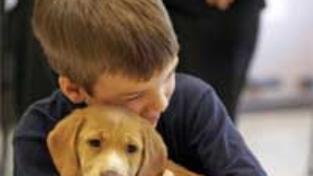 Il bambino e il cucciolo a quattro zampe