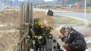 Ricordando Fukushima