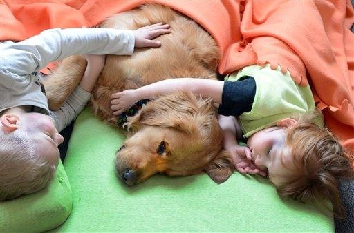 Cane utilizzato nella pet-therapy per i bambini