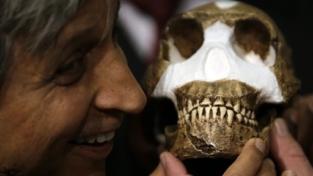 Homo Naledi è nostro antenato?