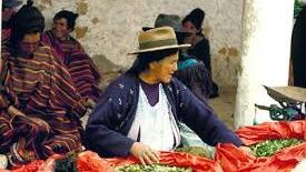 Universali alcuni principi delle culture indigene