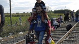 Abbiamo dato cibo e vestiti ai migranti in cammino