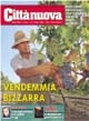 Vendemmia bizzarra
