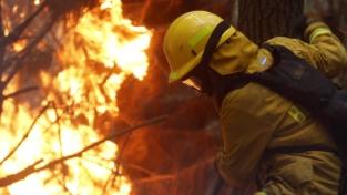 Il Centro Sud del Cile sconvolto da incendi
