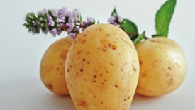 Tortini di patate e cipolle al profumo di origano
