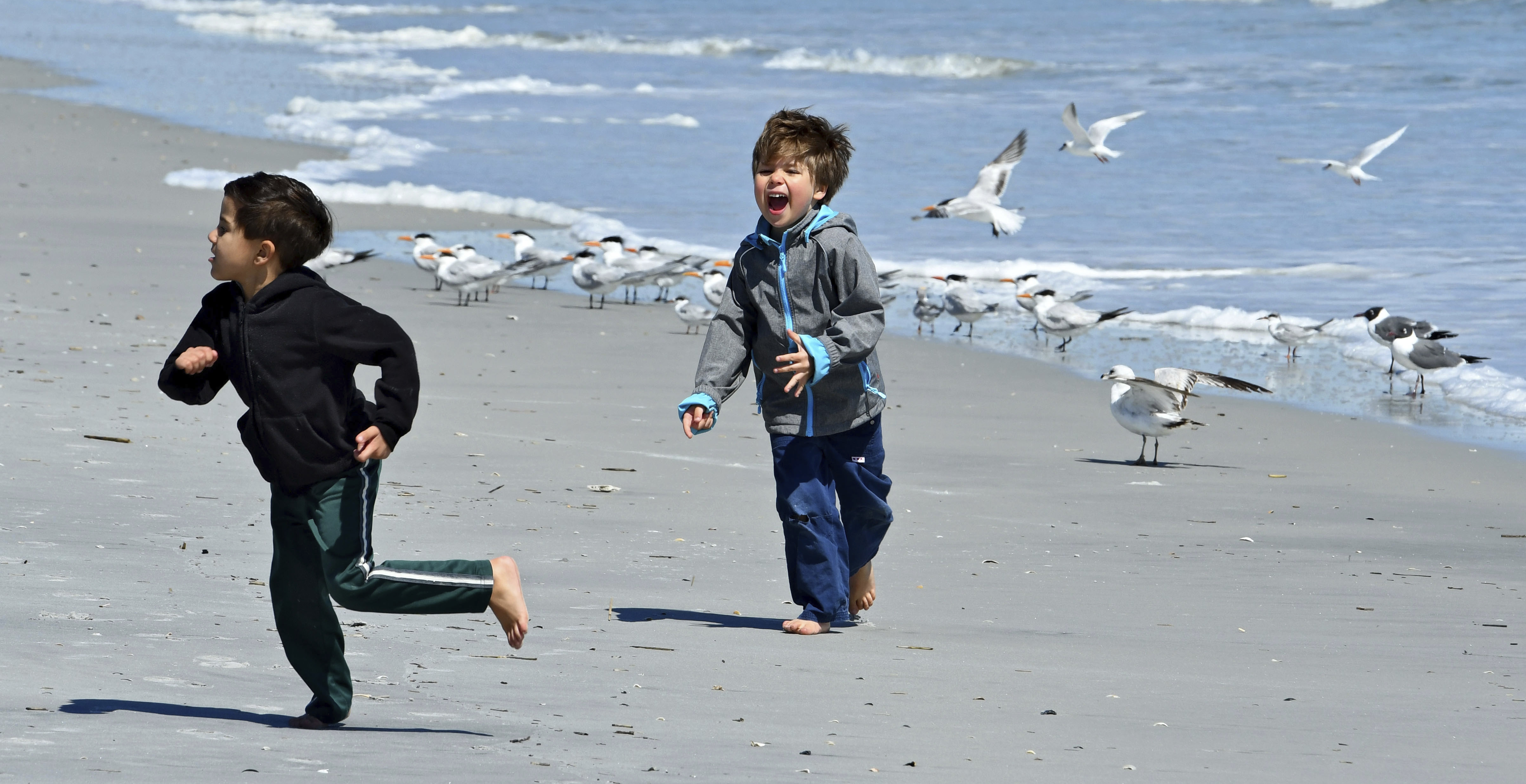 Local resident Marco, 5, (from left) and his cousin Lucas, 5, visiting from his home in Finland run away after teasing a flock of sea birds into flying on Atlantic Beach, FL. On Wednesday March 15, 2017 the threat of a possible hard freeze overnight in the Jacksonville, FL  brought firewood sales, shelter preparation and even a few folks who took advantage of the sunshine to play on Atlantic Beach filled the day as people prepared for the cold in their own way.  (Bob Mack/Florida Times-Union via AP)