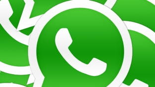 WhatsApp senza segreti