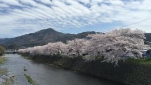 Monte Hiei: 30 anni di preghiera per la pace