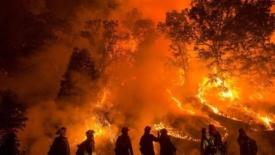 Piromani e pompieri