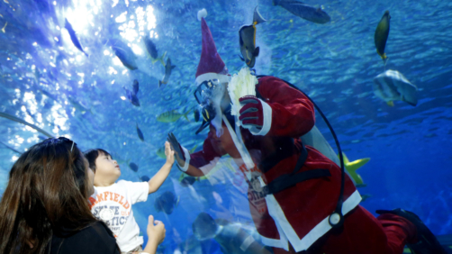A mother raises her child to interact with a diver dressed in a Santa costume feeding grouper, stingrays, sharks and other fish at the Manila Ocean Park, the country's largest oceanarium, Friday, Dec. 15, 2017 in Manila, Philippines. With a few days left before Christmas, various malls and other business establishments come up with their own way of attracting patrons with bazaars, Christmas displays and even free concerts. (AP Photo/Bullit Marquez)