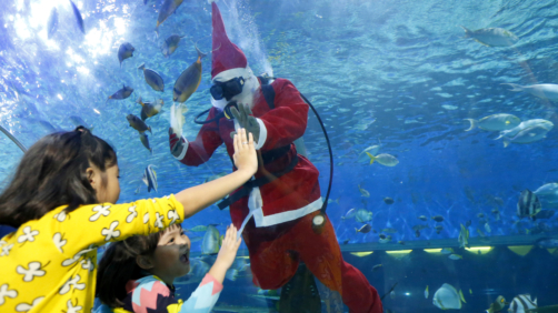 Children interact with a diver dressed in a Santa costume as he feeds grouper, stingrays, sharks and other fish at the Manila Ocean Park, the country's largest oceanarium, Friday, Dec. 15, 2017 in Manila, Philippines. With a few days left before Christmas, various malls and other business establishments come up with their own way of attracting patrons such as bazaars, Christmas displays and even free concerts. (AP Photo/Bullit Marquez)