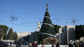Quell'albero di Natale spento