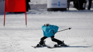 Le Olimpiadi invernali dei robot