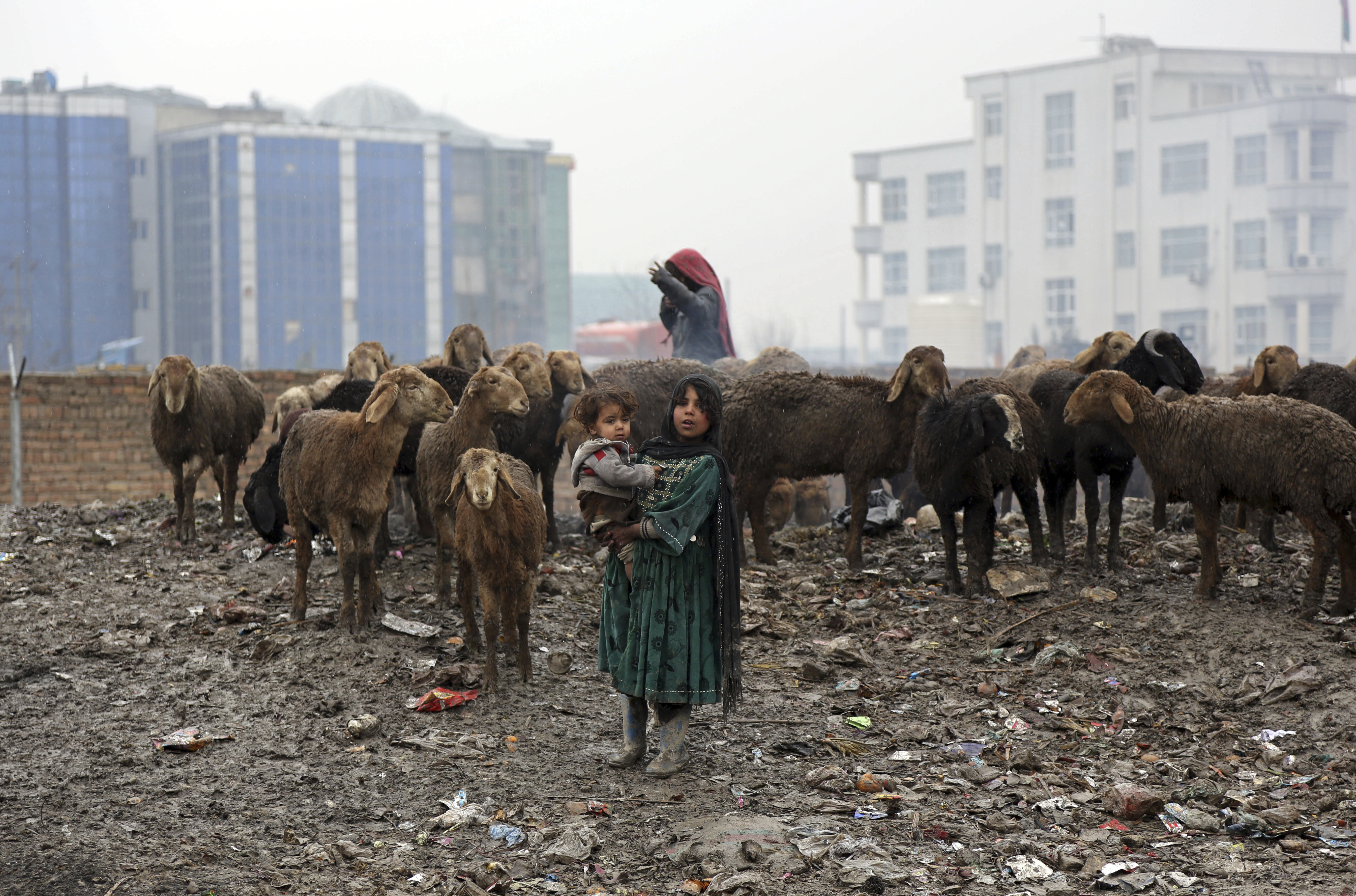 An Afghan girl holds her sister as she poses for a photograph near her sheep in Kabul, Monday, Feb. 12, 2018. (AP Photo/Rahmat Gul)