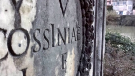 Cossinia e le altre