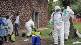 Ebola, l'ecatombe