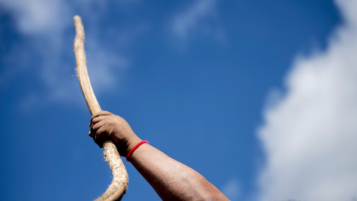 17 November 2018, Chile, Temucuicui: A member of the Mapuche community holds a wooden club (