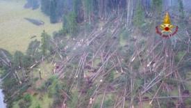 Maltempo, solo la foresta che cade fa notizia