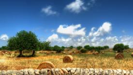 Muri a secco, patrimonio Unesco