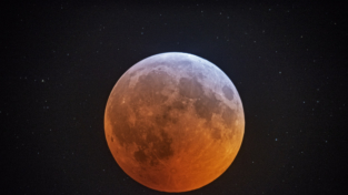 La Luna si mostra in tutta la sua bellezza