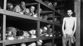 Primo Levi: il grande narratore dell'olocausto