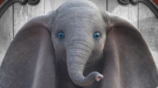 La lezione di Dumbo