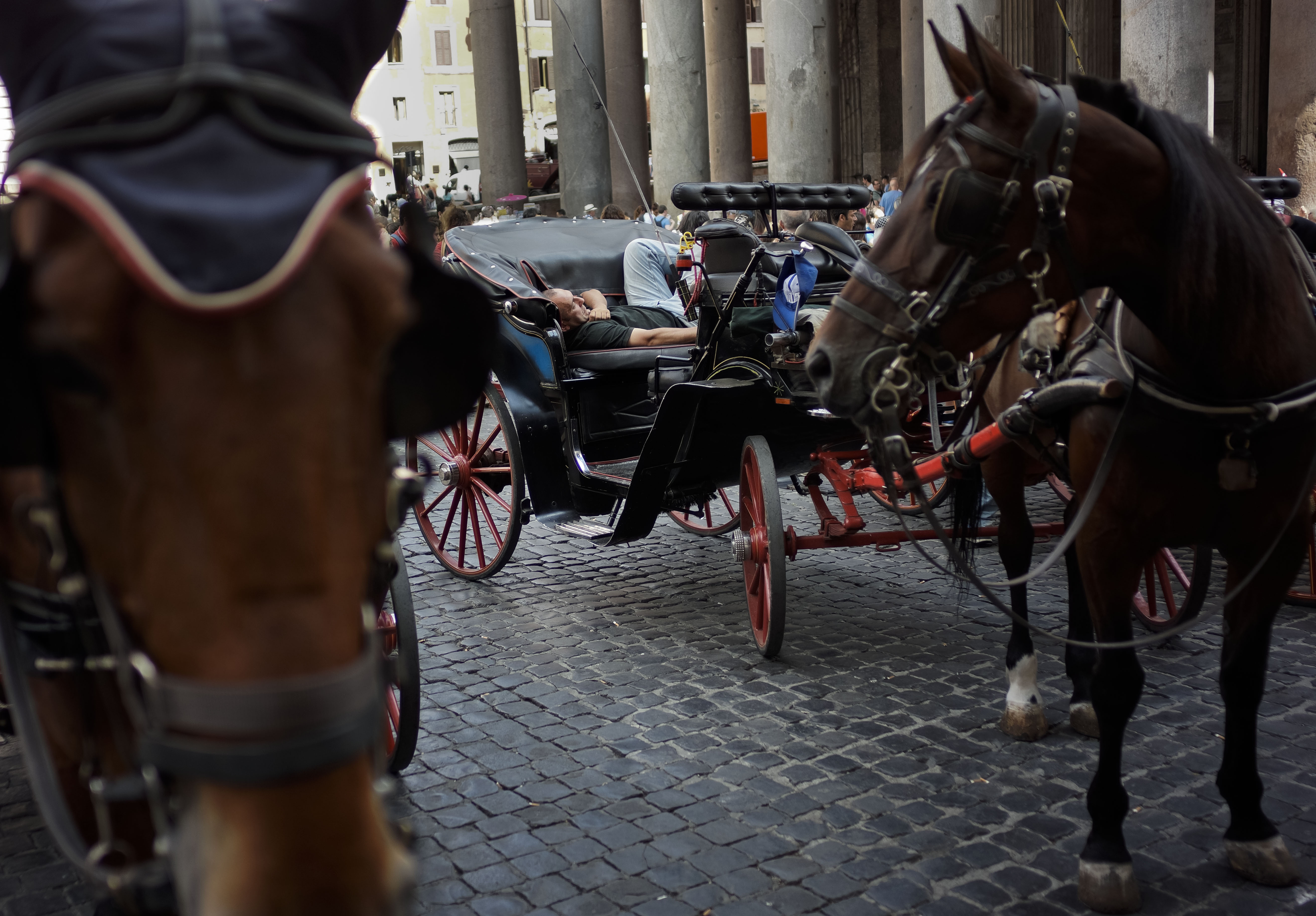 A carriage driver waits for clients in front of Rome's Pantheon, Friday, June 28, 2013. Roman horse carriages are very popular among tourists to get around town, especially in the Summer. (AP Photo/Domenico Stinellis)