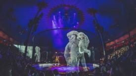 Circus Roncalli: ologrammi invece di animali