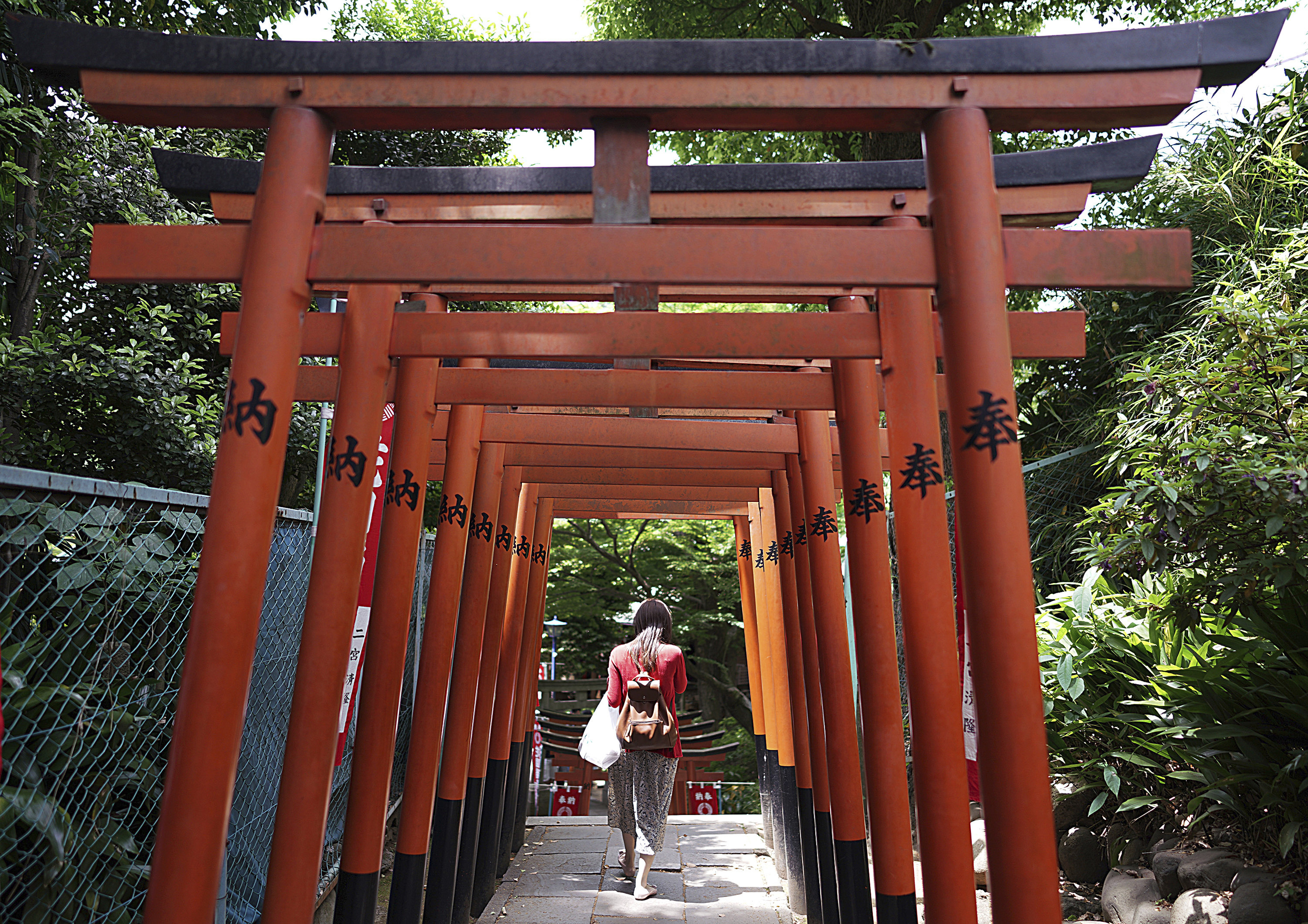 A visitor walks through a path lined with small shrine arches or