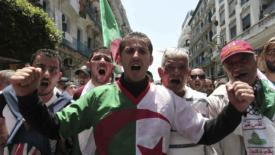 Algeria e non solo
