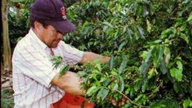 Colombia: un prete imprenditore