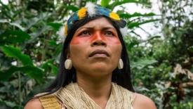 Il popolo Waorani in pericolo