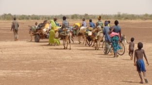 Migrazioni africane