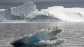 La Groenlandia si scioglie