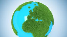 L'impegno delle aziende per l'ambiente
