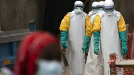 Nuovi farmaci contro l'ebola